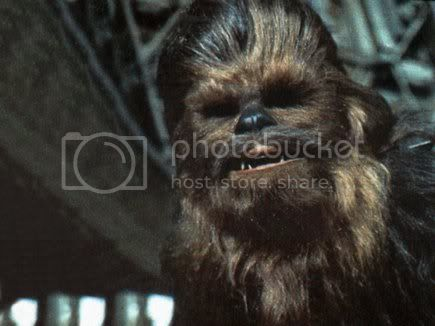 sad chewie